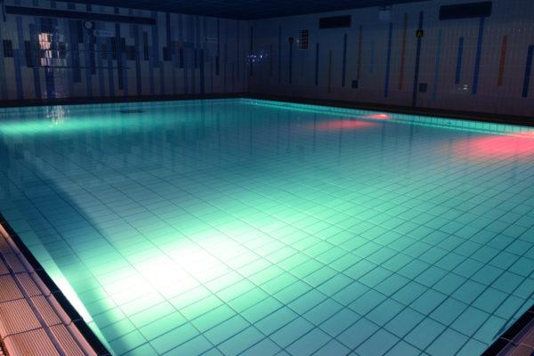 Swimming pool 2014 (4)